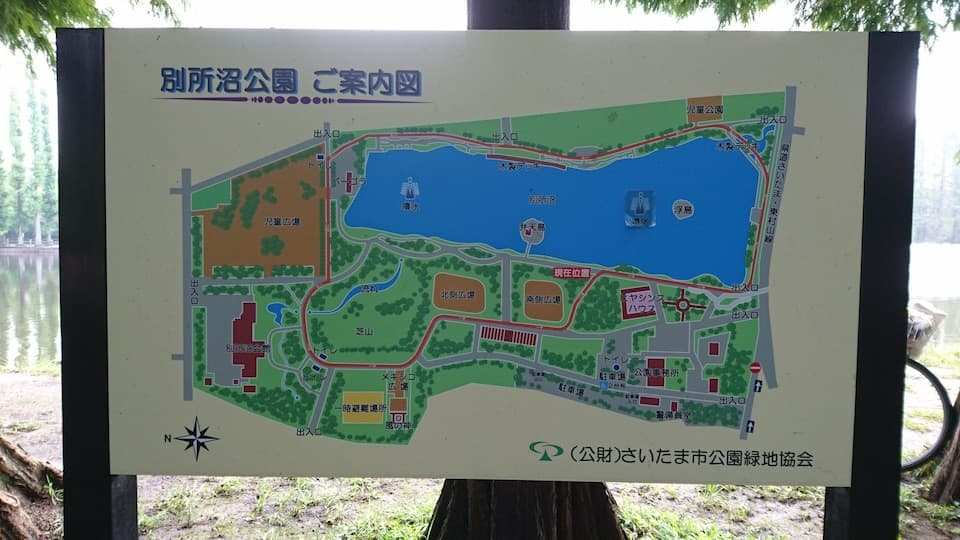 浦和で一番人気のランニングスポット「別所沼公園」
