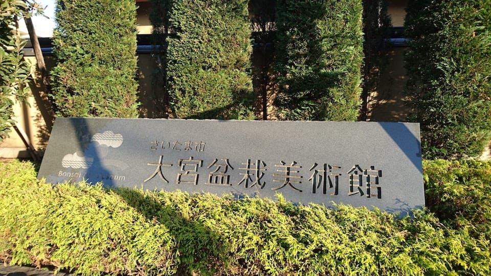 国宝級の盆栽がたくさん!「大宮盆栽美術館」で盆栽アートに癒されてきた|ともらん