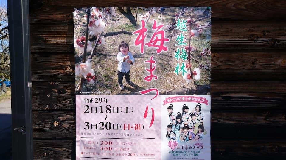 「越生梅林まつり」で梅と埼玉B級グルメを満喫!