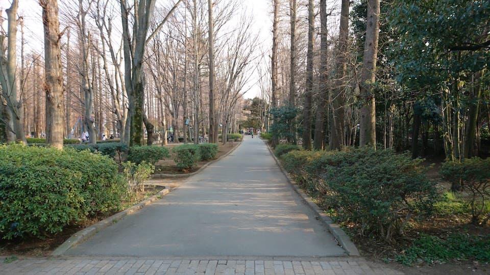 北浦和〜武蔵浦和を結ぶ「別所沼公園ルート」を走ってきた|ともらん