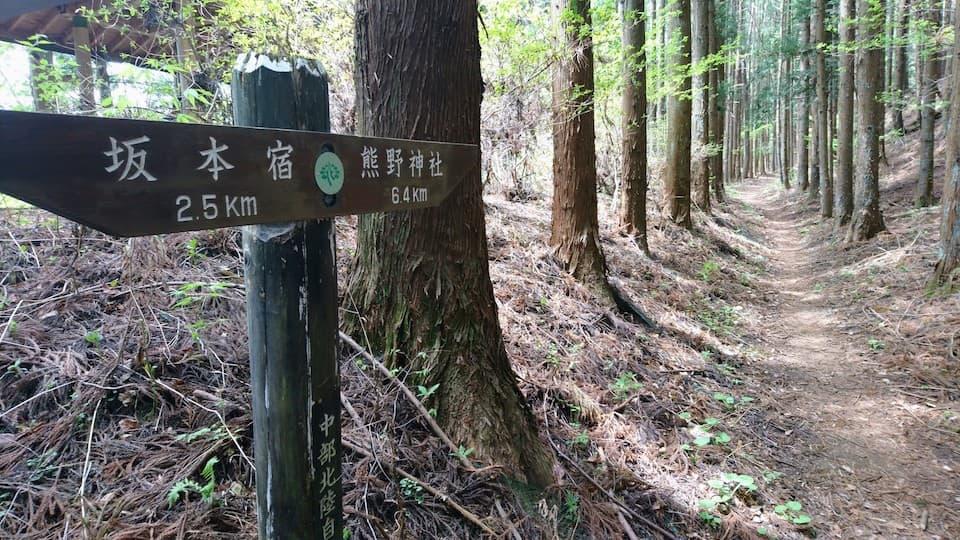 LSDと坂道トレーニングは旅ランで楽しく走れる!碓氷峠で33キロ、高度1200メートル
