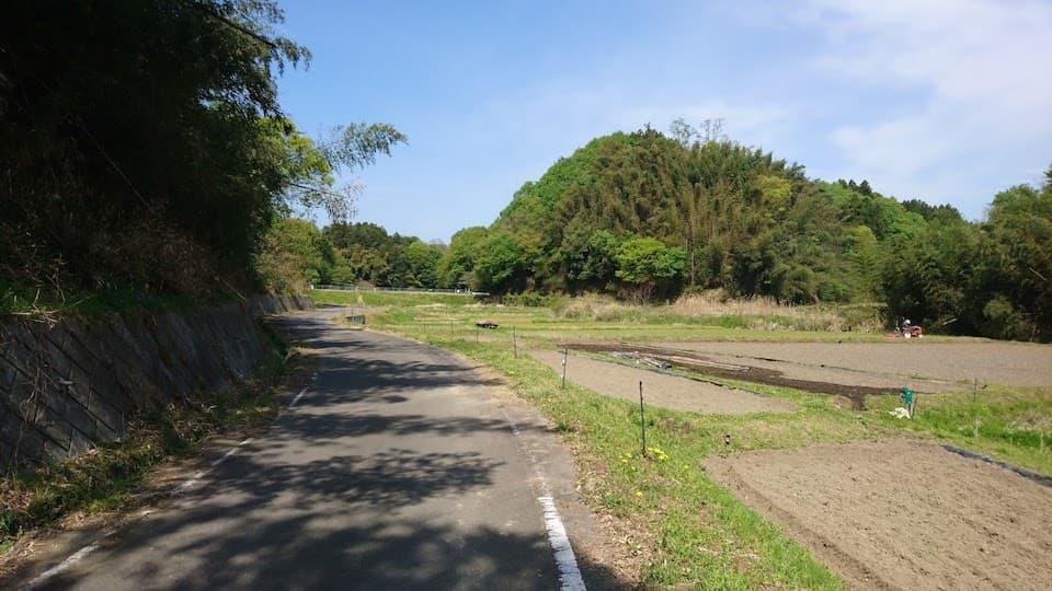 田植えの風景