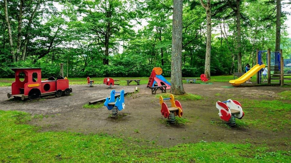 大人の街・軽井沢で子供が夢中に遊べる「軽井沢タリアセン」
