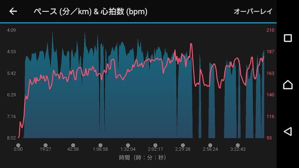 実録!フルマラソンで「30キロの壁」にぶち当たった時の心構えと対処法