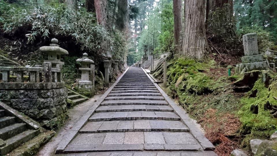 高野山(九度山〜奥之院)の日本一スピリチュアルなランニングコース