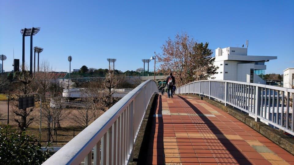 埼玉県の人気ランニングスポット「大宮公園」巡り