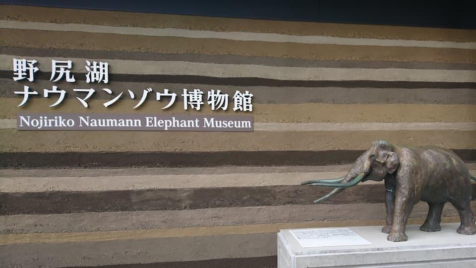 ウォータースポーツだけじゃない!野尻湖の「ナウマンゾウ博物館」が面白い