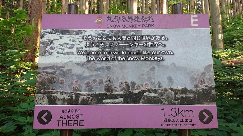 長野県「地獄谷野猿公苑」の行き方。最低でも15分は歩きます