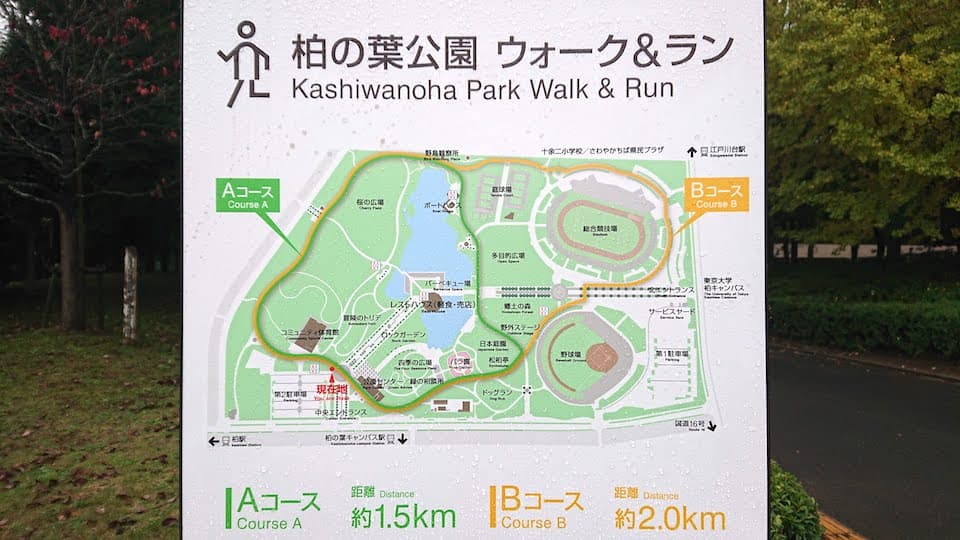 仕事で千葉県柏市の「柏の葉キャンパス」に滞在しました。柏の葉キャンパス駅周辺を走る機会があったので、おすすめのランニングコースを3つ紹介します。