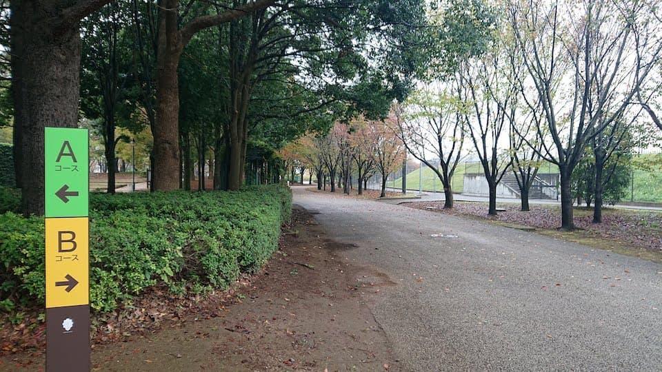 柏の葉公園 ランニングコース
