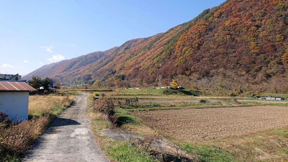 中山道の田舎道
